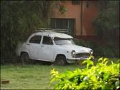 Rishikesh - Ashram 'Parmart Niketan', jardin