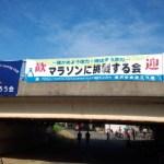 残念!サブ4ならず マラソンに挑戦する会2014