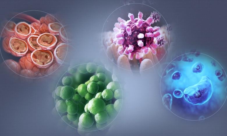 immunometabolism