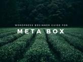 WordPress Beginner guide for Meta Box