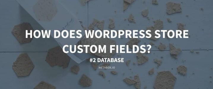 How does WordPress Store Custom Fields? #2 Database