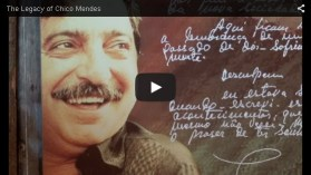 video - legacy of chico mendes