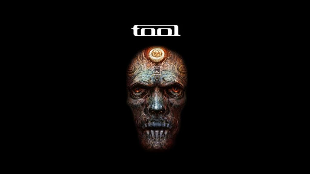 "TOOL ALBUM ""PROGRESSING NICELY"""