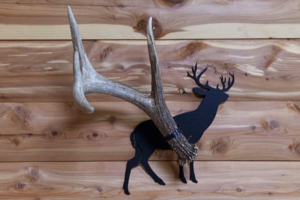 Single Shed Deer Antler Holder