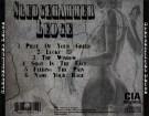sledgehammer-ledge-demos-95-96-1996-back