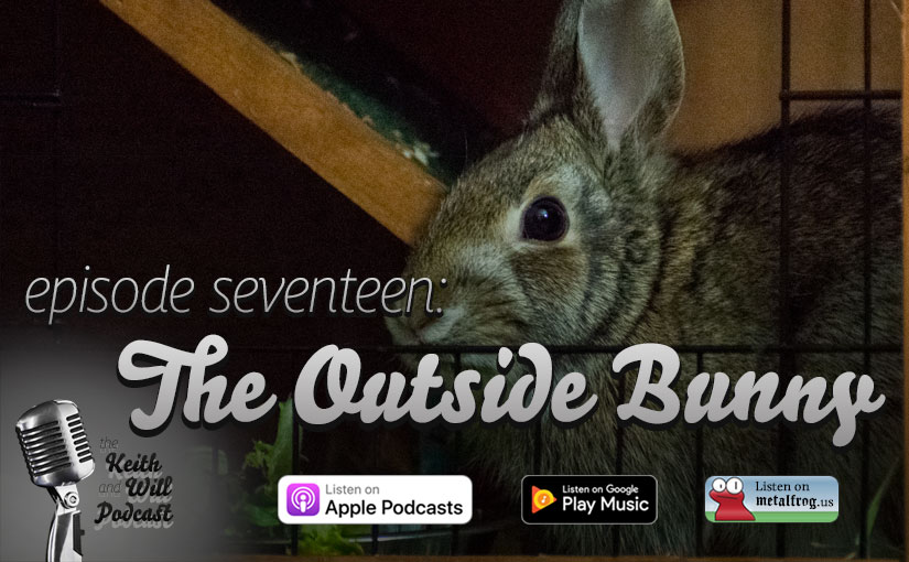 Episode Seventeen: The Outside Bunny