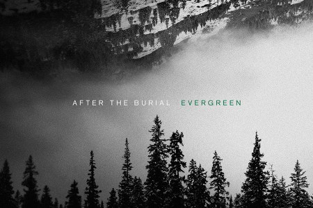 After the Burial Evergreen