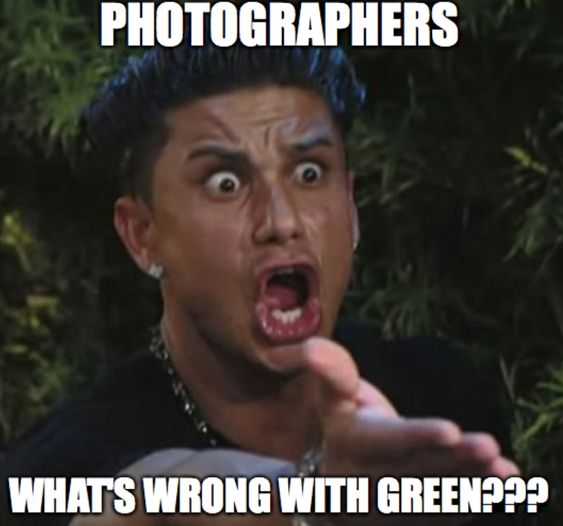 11 best photography memes