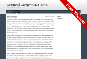 Wordpress SEO Theme