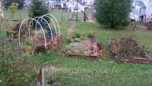 fall garden beds