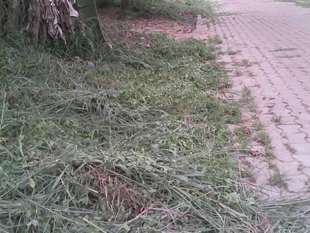 Mékambo: Franck ATABI BOKAMBA ensoleille la ville