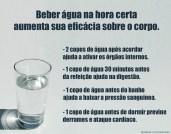 Beber água na hora certa aumenta sua eficácia sobre o corpo