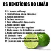 Os benefícios do limão.