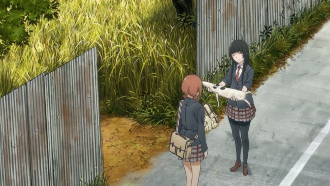 Flying Witch - For you