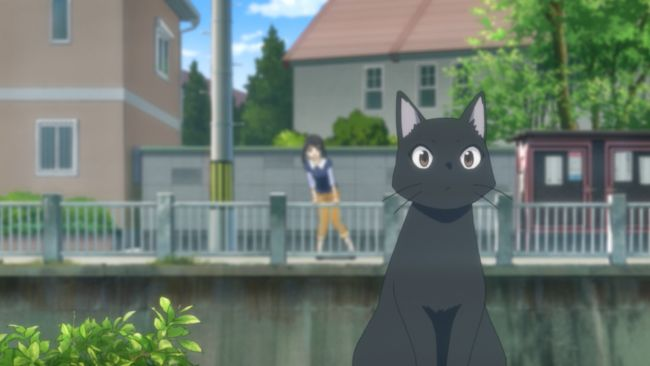 Flying Witch - There he is