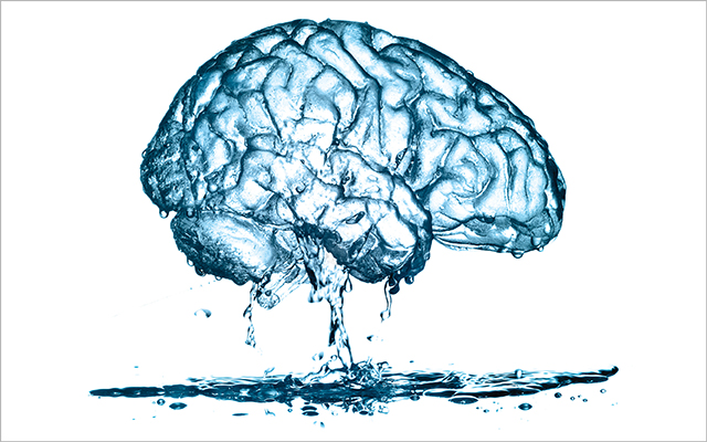 Dr Mona Harrison – Water to The Brain