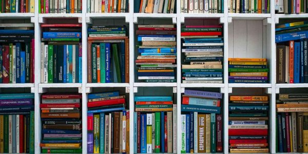 A well stocked bookcase offering lots of reading choice