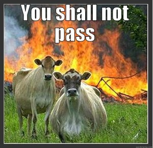 you-shall-not-pass