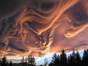 Nubes asperatus