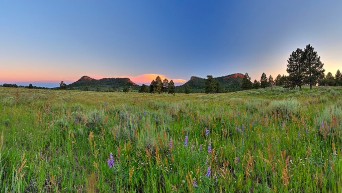Environmental and tribal groups hoped to have 1.9 million acres around Bears Ears declared a national monument. President Joe Biden designated 1.36 million acres, restoring it to its former size. (Photo by Tim D. Peterson Jr./Bears Ears Inter-Tribal Coalition)
