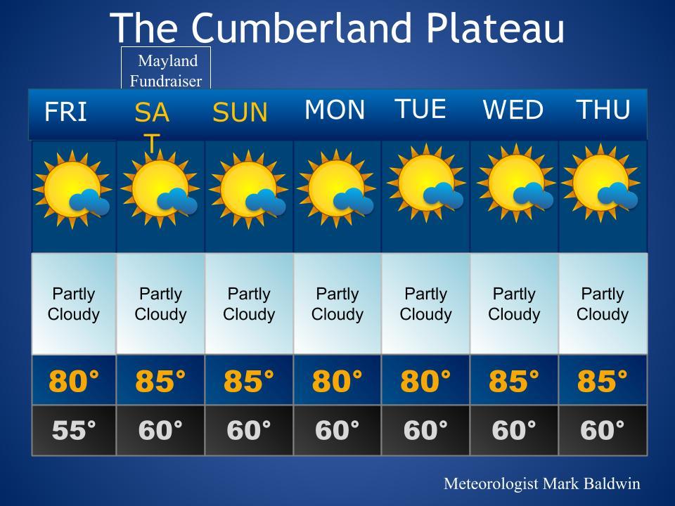 Forecast_Template (60)