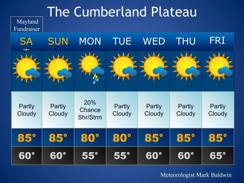 Forecast_Template (63)