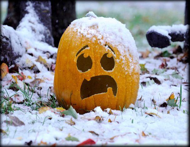 SnowPumpkin