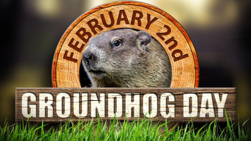 groundhog+hd