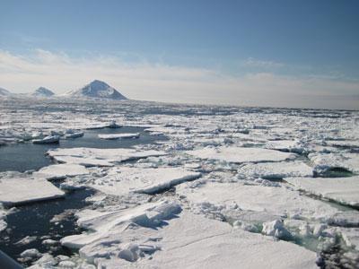 Cambio climático: El panorama en el Polo Norte es cada vez más crítico