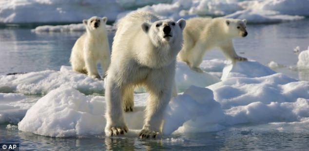 El planeta está pasando por uno de los mayores cambios en el clima en los últimos 65 millones años