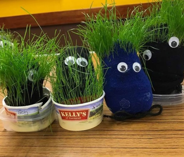 Grass heads are a Nature Based Toddler Group Activities