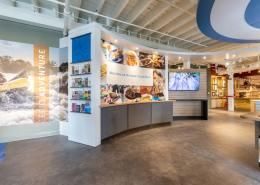 Custom Literature and Counter Area Design