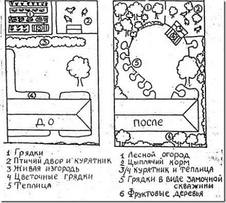 Билл Моллисон Пермакультура Руководство Для Дизайнера