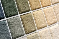 Carpet Fiber Identification|Buffalo NY | Method Clean
