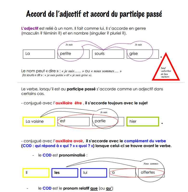 Accord de l'adjectif et accord du participe passé