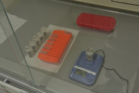 The dried samples are mechanically homogenised using a bead mill and sterile tubes (which are only used once).