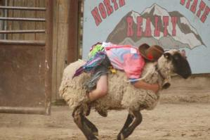 Lucien Paz takes his turn at the mutton busting event. Photo by Mike Maltais