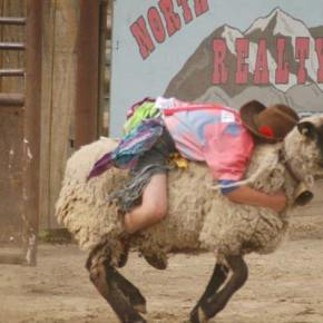 The rodeo is on