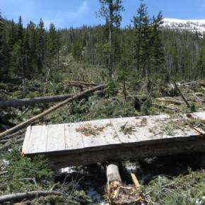 Bridge carried downslope from trail about 150 feet near west edge of Cutthroat Trail avalanche. Photo courtesy USFS