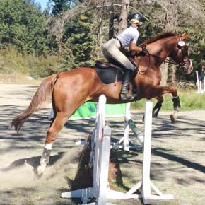Methow Valley equestrians do well at Whidbey meet