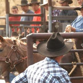Hammer wins 43rd Methow Rodeo All-Around title