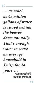 beaver-quote