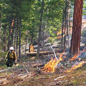 Parlette introduces bills to expand use of prescribed burning