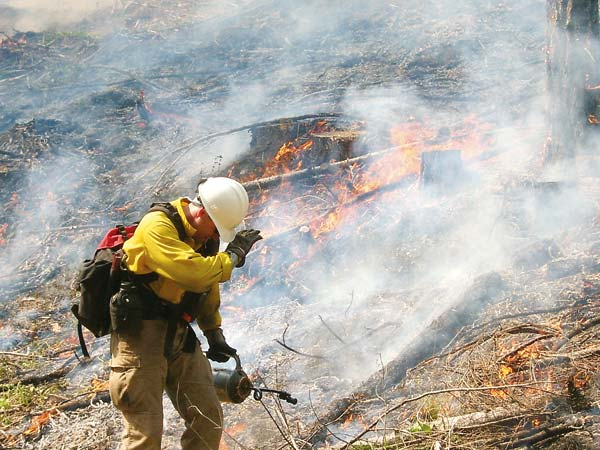 File photo by Marcy Stamper The Methow Valley Ranger District has been using prescribed burning as part of its dry-forest restoration strategy since the mid-1990s. This Forest Service firefighter worked on a prescribed burn near Little Bridge Creek about 10 years ago.