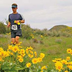 Individual slots still left in Sunflower Marathon and Relay