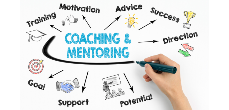 Coaching mentoring consultation