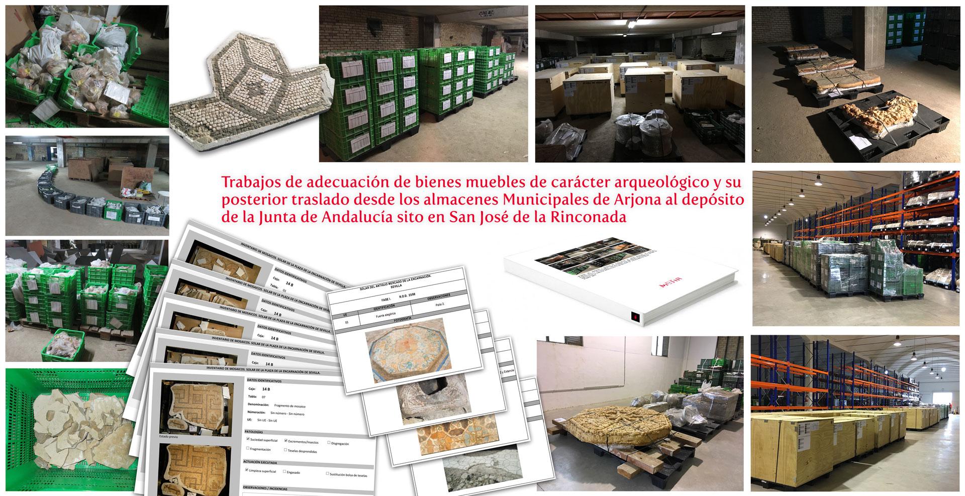 Trabajos de adecuación de bienes muebles de carácter arqueológico y su posterior traslado desde los almacenes municipales de C/ Arjona al depósito de la Junta de Andalucía sito en San José de la Rinconada (Sevilla)