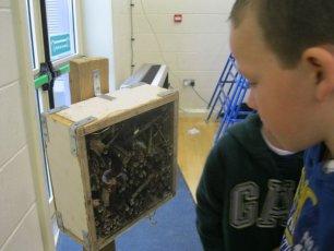 biodiversity-secret-life-of-bees-metns-nov-2013-035