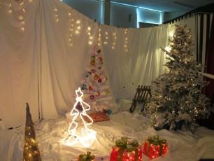 metns-christmas-fair-2012-003-800x600