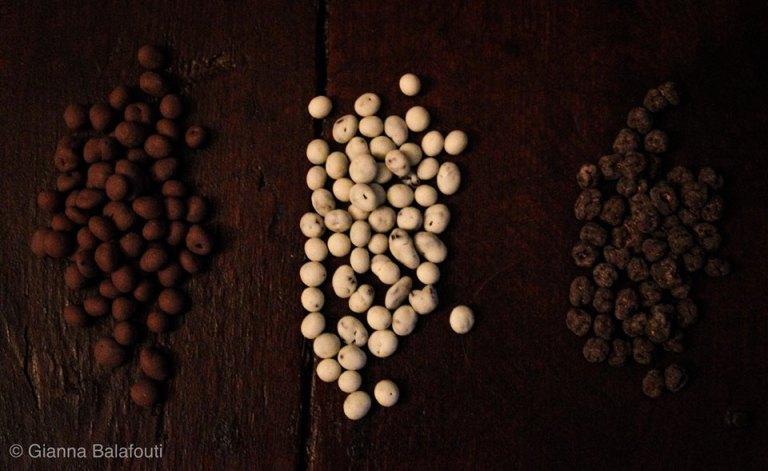 Read more about the article Golden Black – Κορινθιακή Σταφίδα Σκιάς με επικάλυψη Σοκολάτα λευκή, γάλακτος και υγείας.